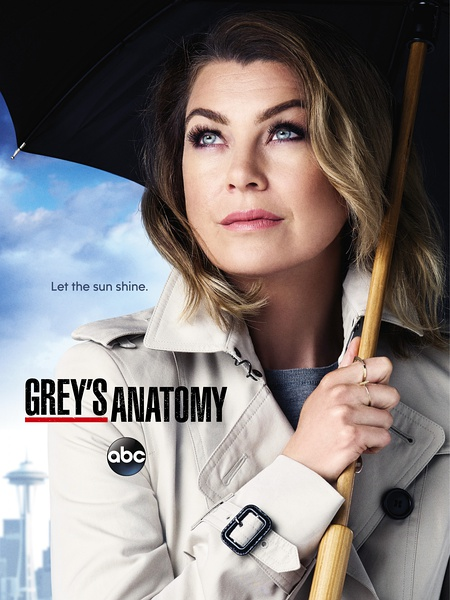 实习医生格蕾第十二季